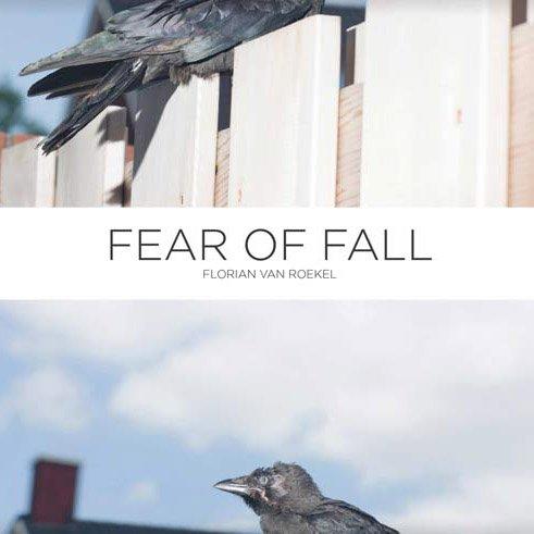 fearoffall